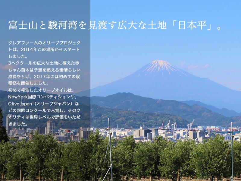 富士山と駿河湾を見渡す広大な土地「日本平」。