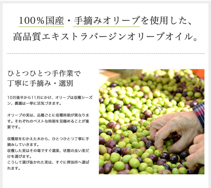 100%国産・手摘みオリーブを使用した、高品質エキストラバージンオリーブオイル。