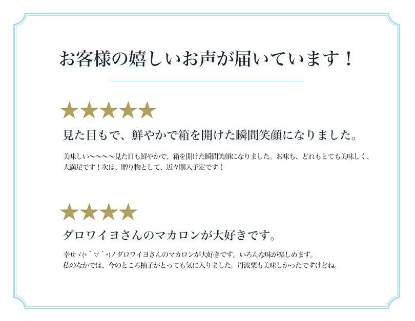 ダロワイヨ 季節のマカロン入り詰め合わせ(14個入)