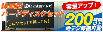 bizz(ビズ)液晶TV録画用HDDセット
