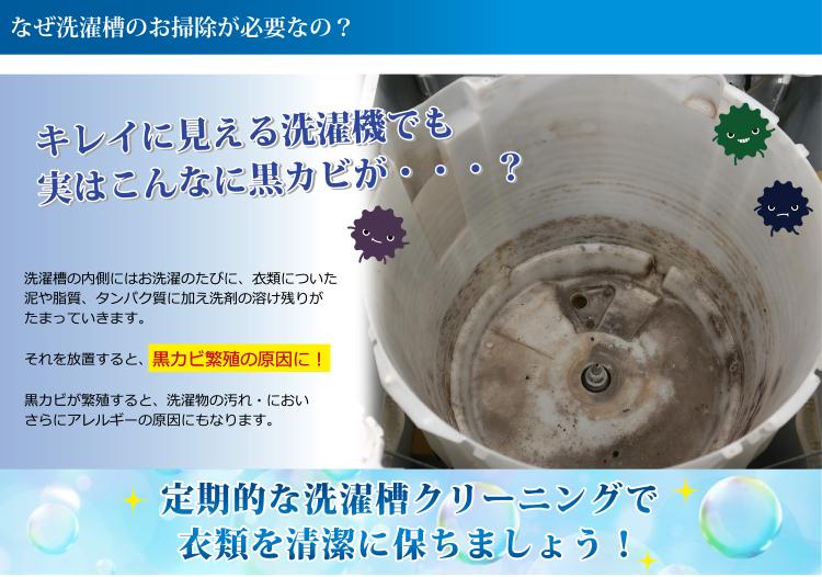 洗濯槽の内側にはお洗濯のたびに、衣類についた泥や脂質、タンパク質に加え洗剤の溶け残りがたまっていきます。それを放置すると、黒カビ繁殖の原因に!黒カビが発生すると、洗濯物の汚れ・においさらにアレルギーの原因にもなります。
