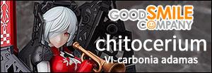 1/1 VI-carbonia adamas chitocerium プラモデル