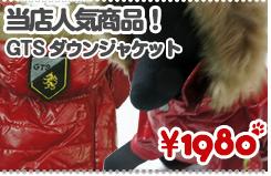 【秋冬モデル】【処分セール】GTS Down jacket - フード取り外し可能 オシャレなダウン風ジャケット♪ PUPPIA/パピア【コート】