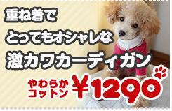 【春夏秋冬モデル】やわらかカーディガン シャツなどに重ね着することでとってもお洒落になります♪/小型犬〜中型犬に最適【シャツ】