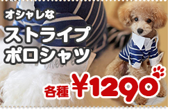 【春夏秋冬モデル】ストライプポロシャツ 襟と袖がオシャレなしっかりとした厚手素材/小型犬〜中型犬に最適【シャツ】