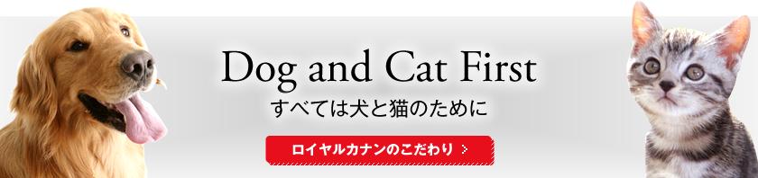 Dog and Cat First 全ては犬と猫のために。