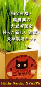 猫草・犬草