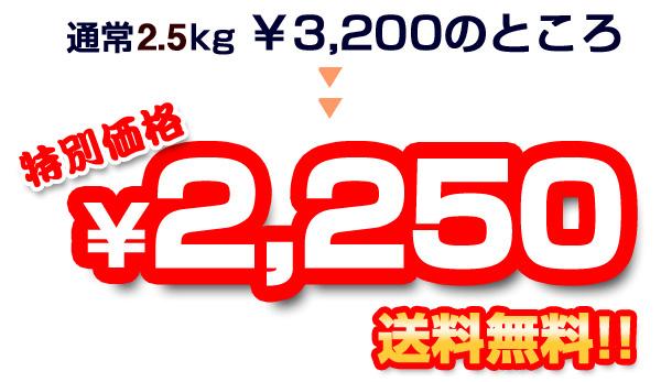 通常3kg3,200円のところを!特別価格2,250円【送料無料!!】