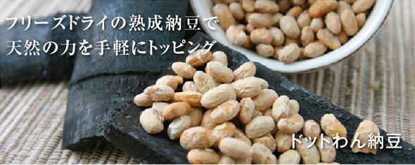 フリーズドライ ドットわん納豆