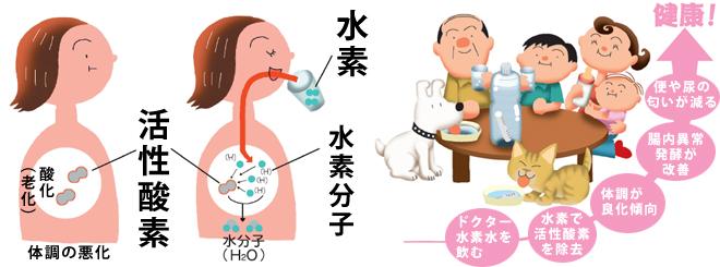 水素で活性酸素撃退 2007年には動物実験などで水素が活性酸素を撃退し医療に使える可能性が...