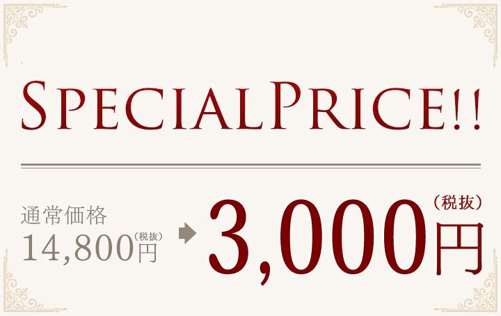 好評につき今だけSPECIAL PRICE!! 3,000円