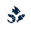 水魚も、淡水魚も飼育可能 バーズアイ水槽