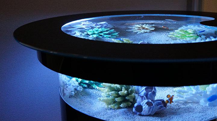 バーズアイ水槽 テーブル 水槽