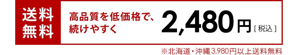 送料無料2,380円(税込)