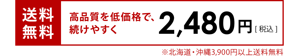 送料無料 2480円