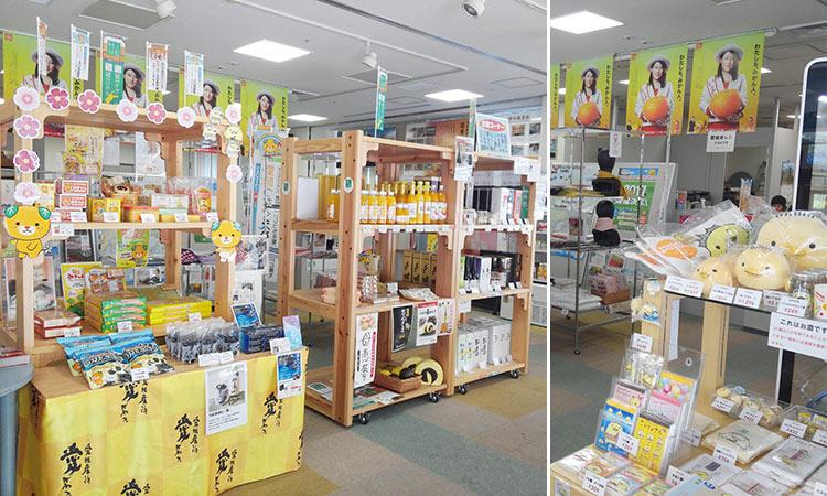 大阪・江戸堀 愛媛県観光物産協会 大阪支部