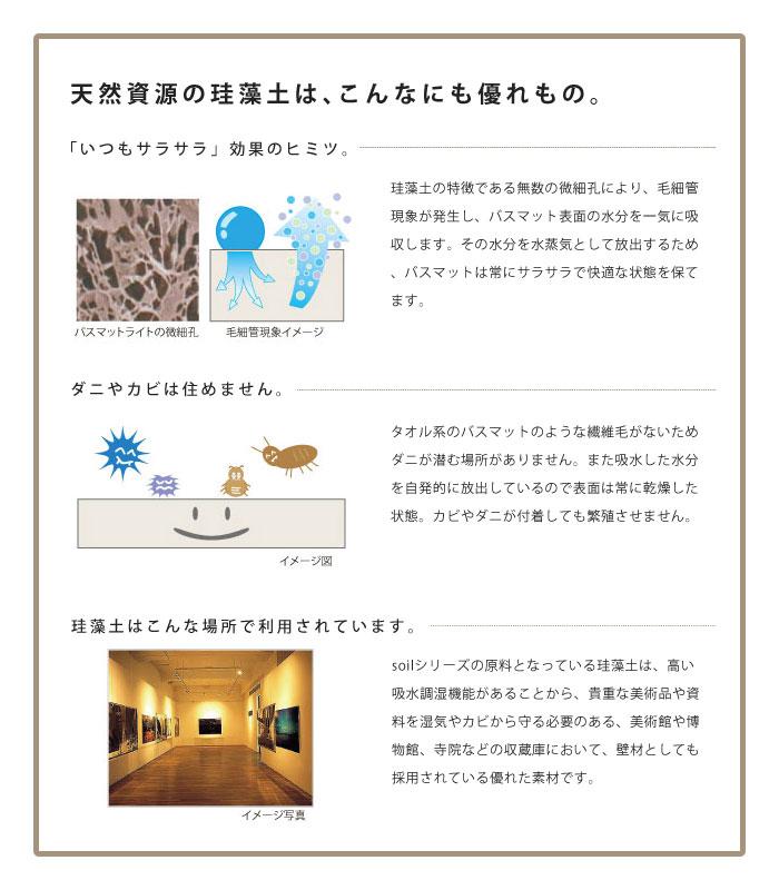 soil_bathmat_lt_11.jpg
