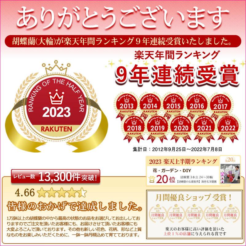 ランキング4年連続受賞