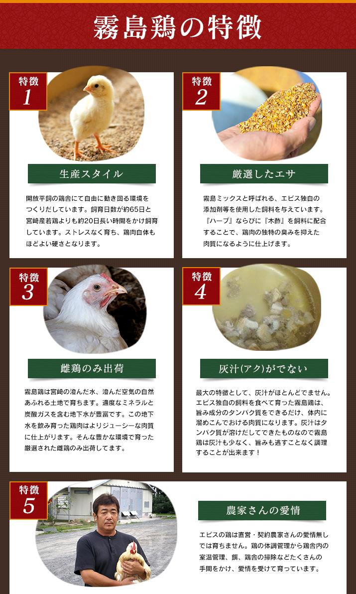 霧島鶏の特徴