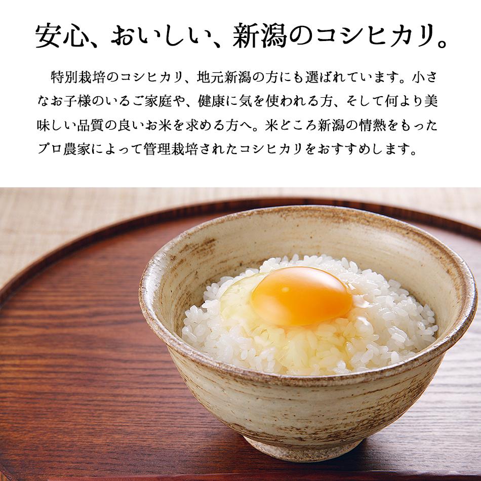 特別栽培米新潟産こしひかり