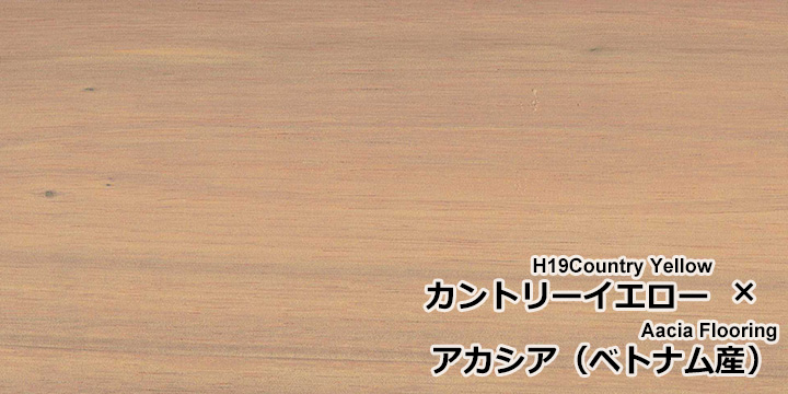 U-OIL(ユーオイル) h19「カントリーイエロー」をアカシア無垢フローリングに塗装