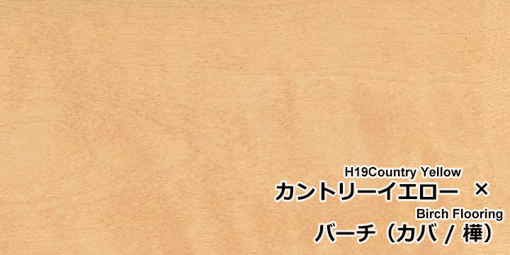 U-OIL(ユーオイル) h19「カントリーイエロー」をバーチ(カバ / 樺)無垢フローリングに塗装