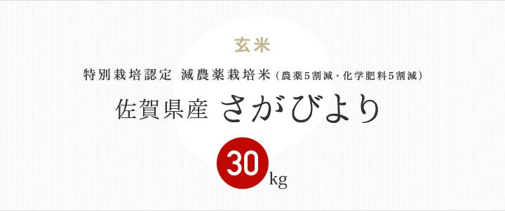 減農薬特別栽培米 佐賀県産さがびより