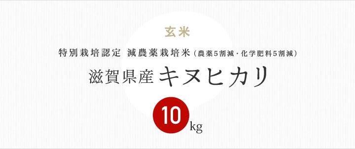 減農薬特別栽培米 滋賀県産キヌヒカリ