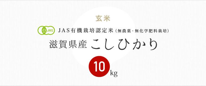 JAS有機栽培認定米 滋賀県産こしひかり
