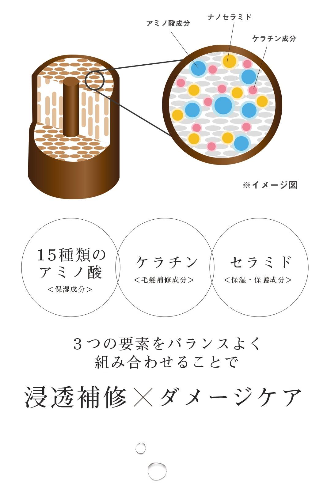 ジョアーロ/joearo/シャンプー/ノンシリコン/セット/ポンプ/スカルプ/アミノ酸/頭皮ケア/ボタニカル/楽天/送料無料