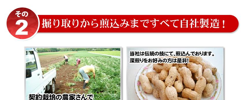 千葉県八街産落花生煎ざやナカテユタカ