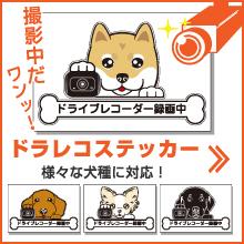 ドラレコ 録画中 ドライブレコーダー ステッカー 犬