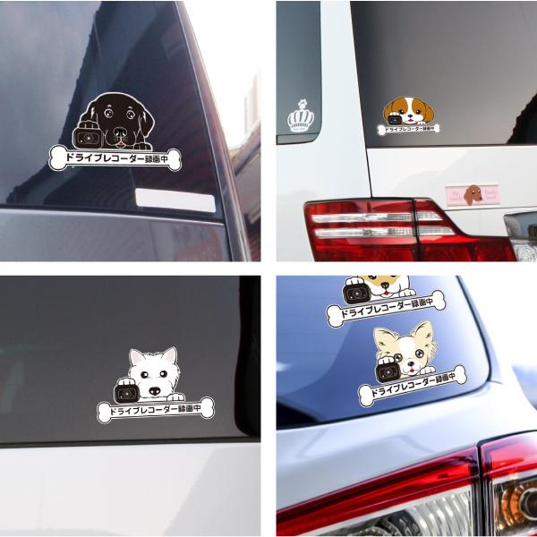 犬 車 ステッカー