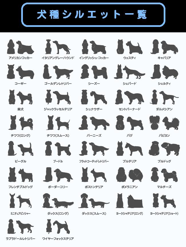 カレンダー 写真 犬 名入れ