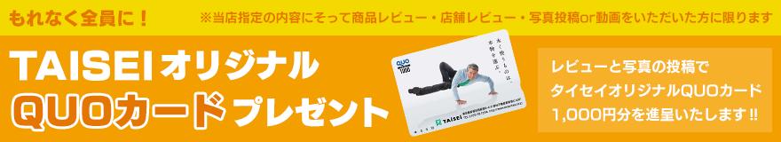 TAISEIオリジナルQUOカードプレゼント