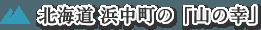 北海道浜中町の「山の幸」
