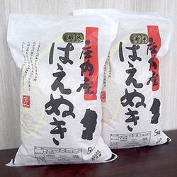 山形県 庄内産 令和2年産 新米 はえぬき精米 10kg(5kg×2袋)