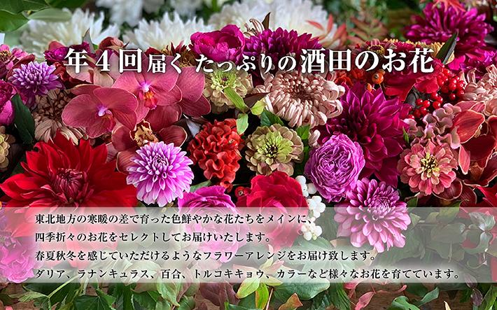 酒田のお花