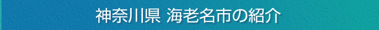 神奈川県海老名市の紹介