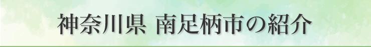 神奈川県南足柄市の紹介