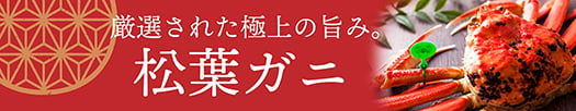 厳選された極上の旨み 松葉ガニ