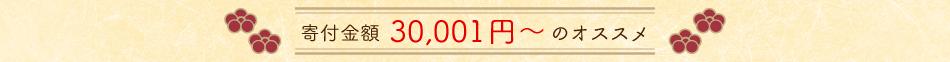 寄附金額30,001円〜のオススメ