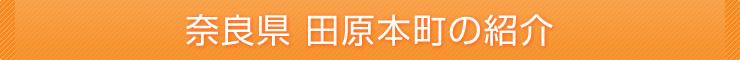 奈良県田原本町の紹介