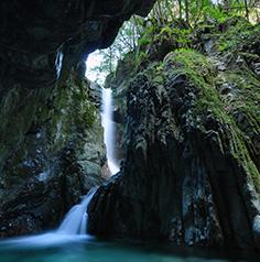 森林整備及び水源かん養に関する事業