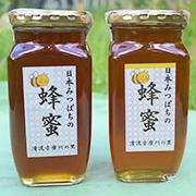 日本蜜蜂のハチミツ 190g瓶×2個