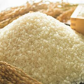 2020年収穫分 福岡県産ヒノヒカリ 3kg