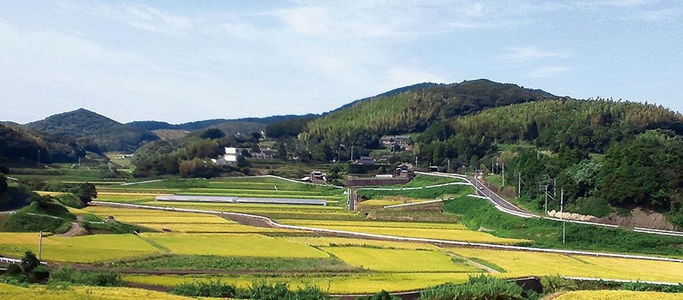 長崎県松浦市の里山風景