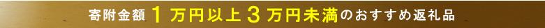 寄附金額10,001円〜30,000円のおすすめ返礼品