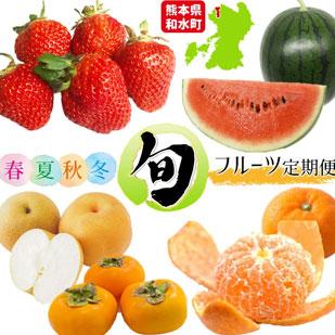 【定期便】熊本人気フルーツ