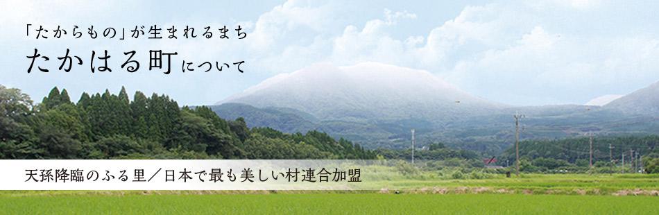 「たからもの」が生まれるまち たかはる町について 天孫降臨のふる里/日本で最も美しい村連合加盟